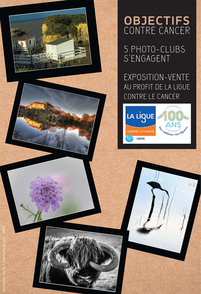 "Exposition-vente ""Objectifs contre cancer"" - , .JPG 218Ko ()"